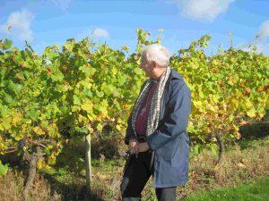 The Bishop visit's Halfpenny Vineyard