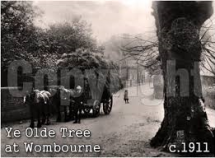Wombourne Past (2)